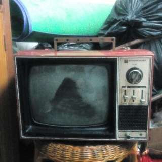 TV lama (for display)