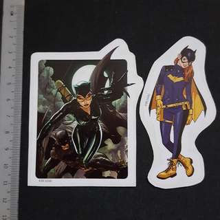 🚚 C5B Catwoman & Batgirl Sticker Stickers