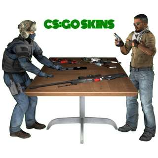 Counter Strike: Global Offensive Skins