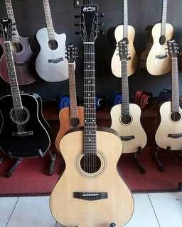 Acoustic Eletric Martin