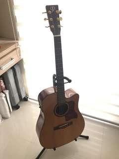 Phoebus PG 50CE Acoustic Guitar