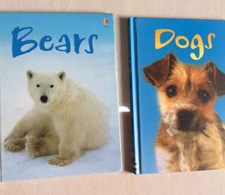 Usborne : Dogs / Bears