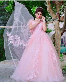 Gorgeous pink princess gown