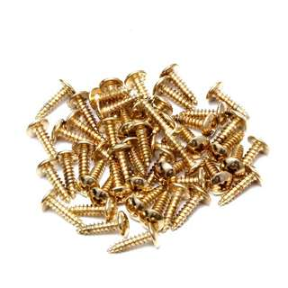 20pcs gold Electric Guitar Bass Screw Screws - for pickguard, cavities controls cover, Stratocaster, Les Paul, Telecaster, PRS, Gibson, Fender Squire