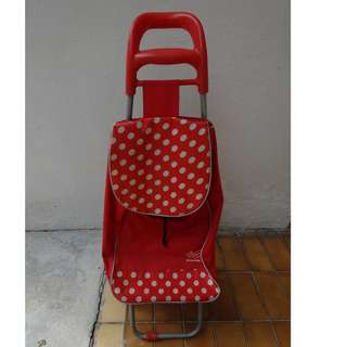 2 Wheels -Shopping Trolley Bag/ Shopping Trolley Cart/market trolleyPortable/Foldable trolley