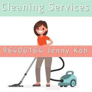Spring Cleaning / Home Cleaning