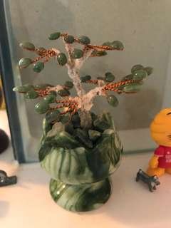 Lightly displayed: green jade mini feng Shui (fengshui) tree money tree