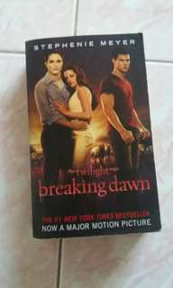 Twilight Saga - Breaking Dawn