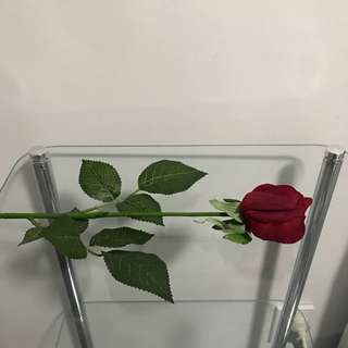 NEW Siena Red Rose Bud Stem