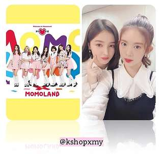 Momoland 100 Different Photocards
