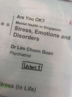 HP8003 Are You Okay?Mental Health in Singapore