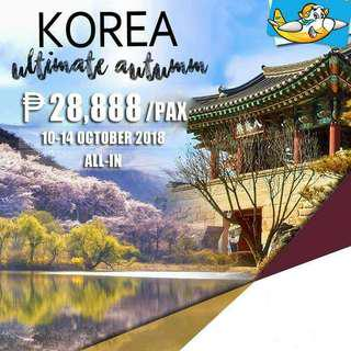Korea Tour Package
