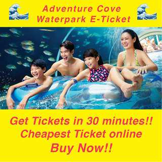 Adventure Cove Tickets (Open-Dated)