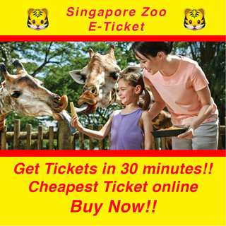Singapore Zoo E-Tickets (Tram Ride Included)