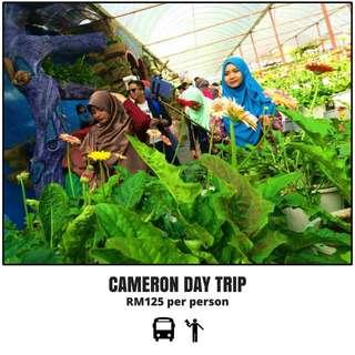 CAMERON HIGHLAND DAY TRIP 2018