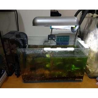 21 x 34.5 x 19 cm 一套(淡水魚缸)
