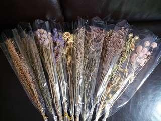 大量不同種類乾花束