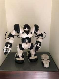Remote control robot