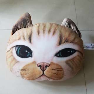 3D仿真 貓咪抱枕/午安枕