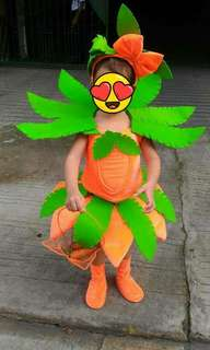Nutrition month costume-carrot