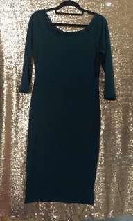 Bodycon Dress (Zara)