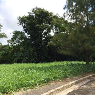 Tagaytay Lot For Sale PUEBLO DEL SOL TAGAYTAY