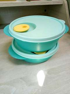 Microwaveable Tupperware Lunch Container
