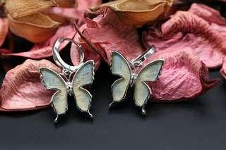 Navia Jewelry - Real Butterfly Wing Danis danis Silver Earrings Korea