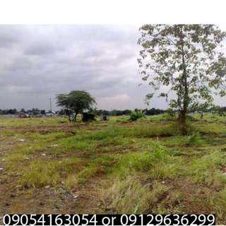 Along commonwealth avenue 1500 SQM Lot for sale (150M Only)