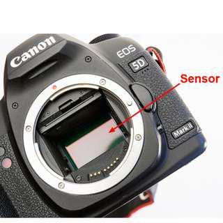 Camera Sensor Cleaning Service