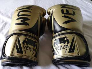 Venum Challenger 2.0 Boxing Gloves 12oz Gold
