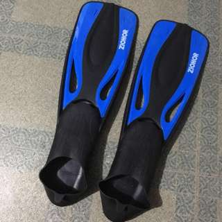 freediving starter fins