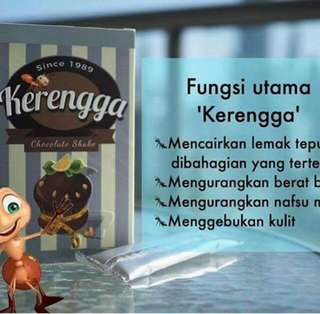 Kerengga Lentik ^Burning Fat^
