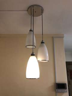 Hanging Light (already dismantled can collect)