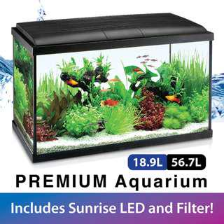 Ripples Premium Aquarium Glass Fish Tank (with Filter and LED Lights) 18.9L/56.7L