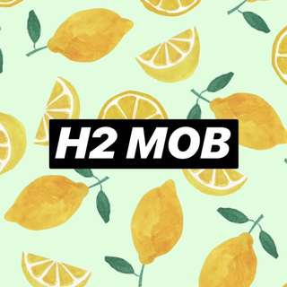 H2 MOB