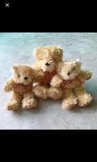 🚚 3隻小熊