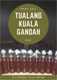 Madu Asli Tualang Kuala Gandah