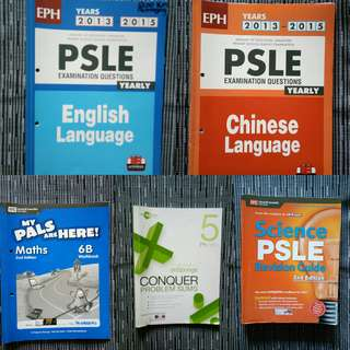 Used PSLE Assessment