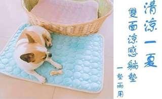 🚚 寵物涼墊 藍L