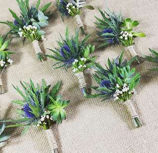 Thistle with Succulents Boutonniere / Grooms Corsages / Wedding Flowers