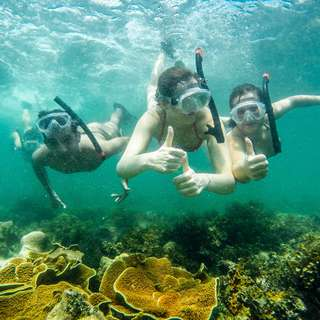 Private Island Snorkeling Holiday