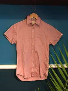 Springfield Pink Polo