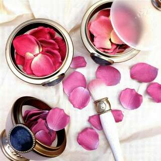 Laduree Rose Petal Blush #02