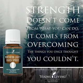 🚚 [FREE MAIL]Young Living Northern Light Black Spruce 5ml