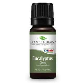 Plant Therapy Essential oil Eucalyptus Dives
