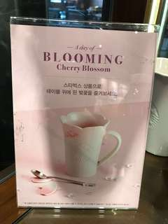 韓國最新Starbucks 杯