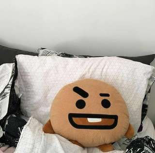 BT21 Unofficial Shooky Pillow ( Only have shooky ) ready stock