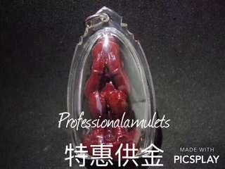 泰國佛牌佛像【特惠供金】龍婆耐💥血胎小寶寶臍帶特別版 佛牌