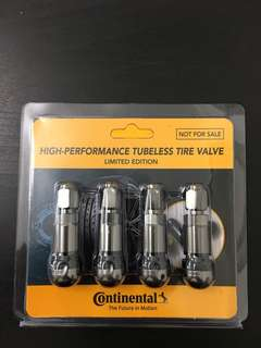tubeless tire valve